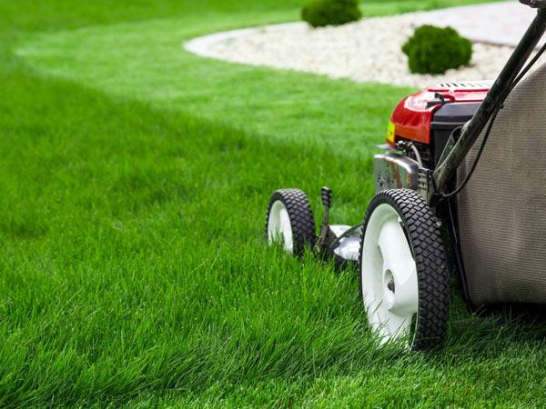 giardiniere-taglio-erba-reggiolo