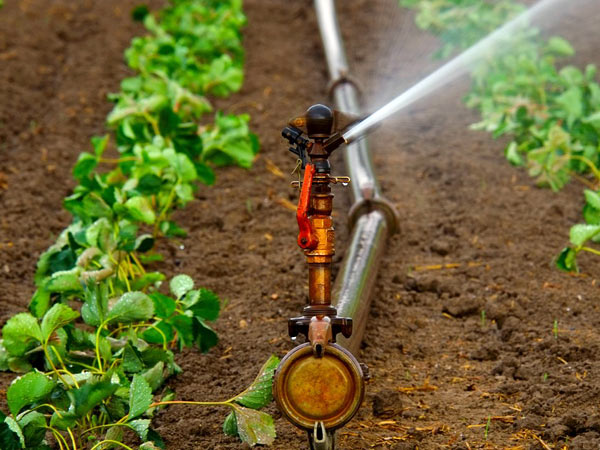 impianti-di-irrigazione-mantova