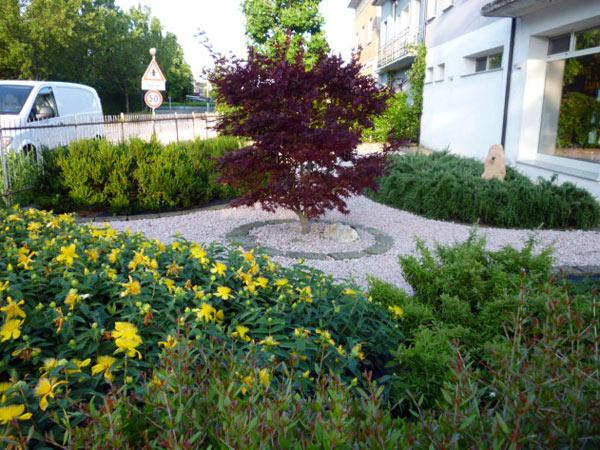 progettazione-giardini-reggiolo-gonzaga