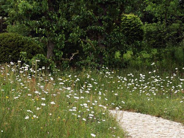 sistemazione-giardini-preventivo-reggiolo
